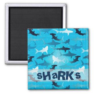 sharks magnet