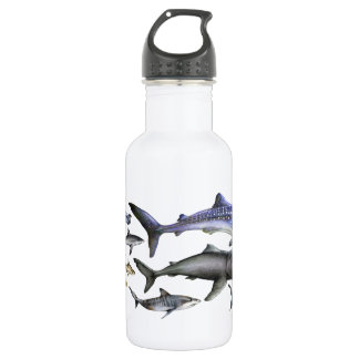 Sharks of the World 532 Ml Water Bottle