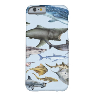 Sharks of the World Barely There iPhone 6 Case