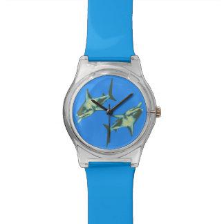 sharks on blue watch