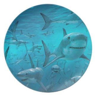 Sharks Plate