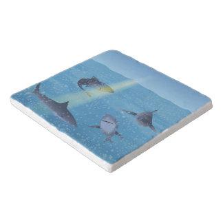 Sharks Trivet
