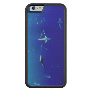 Sharks Underwater Carved Maple iPhone 6 Bumper Case