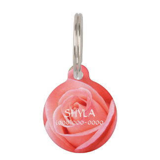 Sharp Solo Pink Rose Image Pet Name Tag
