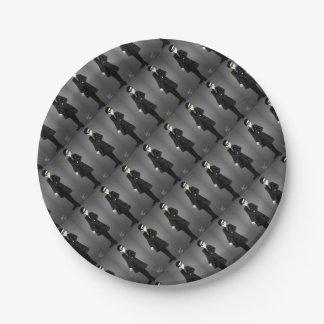 Sharp Suit Paper Plate