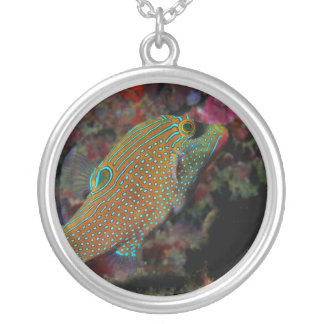 Sharpnosed Puffer Solander's Toby  Blue Spotted Round Pendant Necklace
