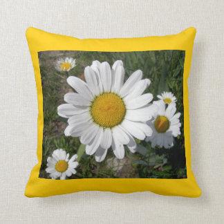 Shasta Daisies (Chrysanthemum maximum) Cushion