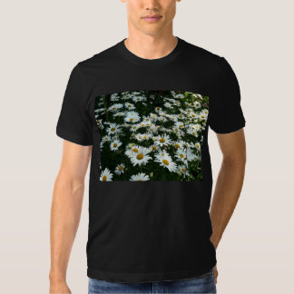 Shasta Daisies II T Shirt
