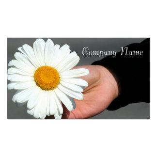 Shasta Daisy Business cards
