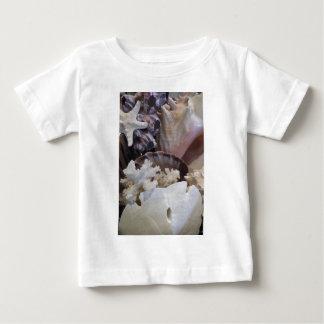 She Sells Sea Shells Baby T-Shirt