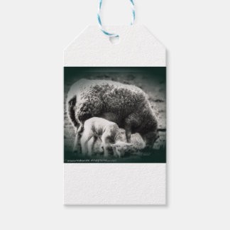Sheep and lamb mono picture gift tags