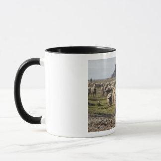 Sheep at the Mont Saint Michel Mug