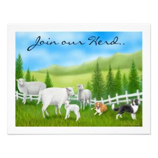 Sheep Border Collies Custom Announcements