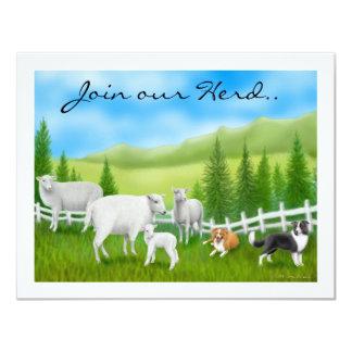 Sheep & Border Collies 11 Cm X 14 Cm Invitation Card