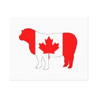 Sheep Canada Canvas Print