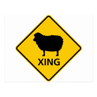 Sheep Crossing Highway Sign Post Cards