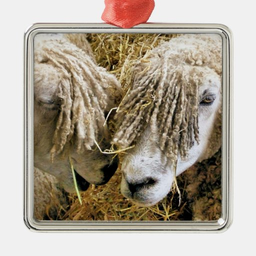 SHEEP ORNAMENTS