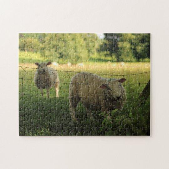 Sheep duo jigsaw puzzle