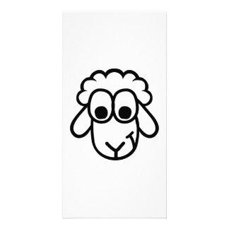 Sheep face customized photo card