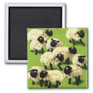 Sheep Food Square Magnet