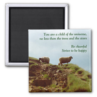 Sheep graze on a Mountain Desiderata Magnet