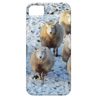 Sheep iPhone 5 Case