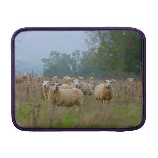 Sheep MacBook Sleeve