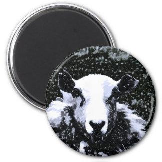 SHEEP 6 CM ROUND MAGNET