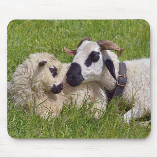 Sheep of Thones et Marthod Mouse Pad