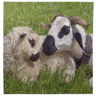 Sheep of Thones et Marthod Napkin