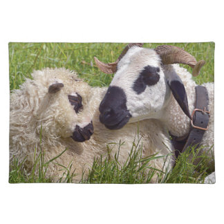 Sheep of Thones et Marthod Placemat