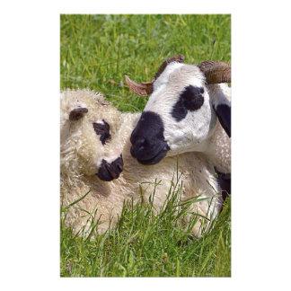 Sheep of Thones et Marthod Stationery