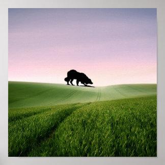 Sheep on the horizon...Border Collie Poster