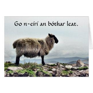 Sheep on the Rocks Card