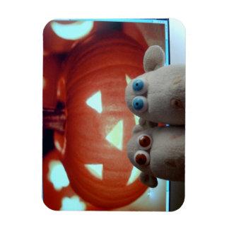 sheep + pumpkin rectangular photo magnet