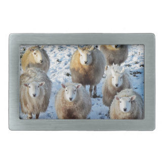 Sheep Rectangular Belt Buckle