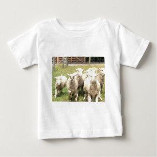 Sheep Stampede Baby T-Shirt