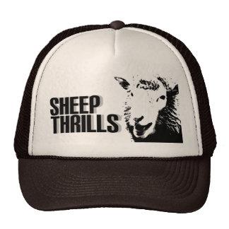 sheep thrills hat
