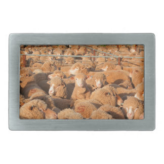 Sheep waiting to be shorn rectangular belt buckle