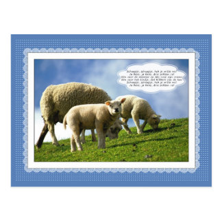 Sheep with dutch children's song postcard