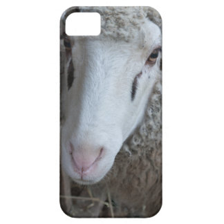 Sheep with hay barely there iPhone 5 case