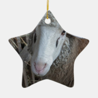 Sheep with hay ceramic star decoration