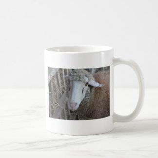 Sheep with hay coffee mug