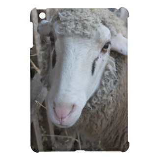 Sheep with hay iPad mini cover