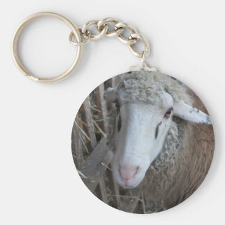 Sheep with hay key ring