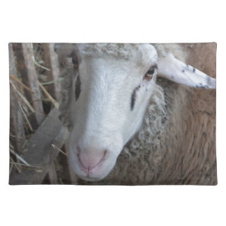 Sheep with hay placemat