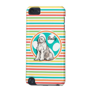 Sheepdog Bright Rainbow Stripes iPod Touch (5th Generation) Cases