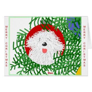 Sheepdog Christmas Card