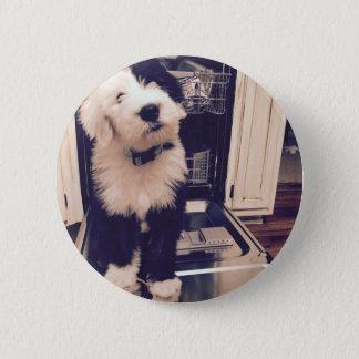 Sheepdog Love 6 Cm Round Badge