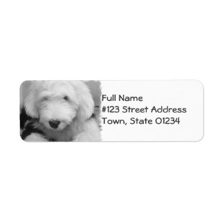 Sheepdog Return Address Mailing Label Return Address Label